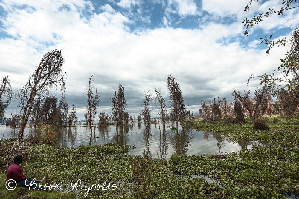 Cloudy skies above Lake Naivasha